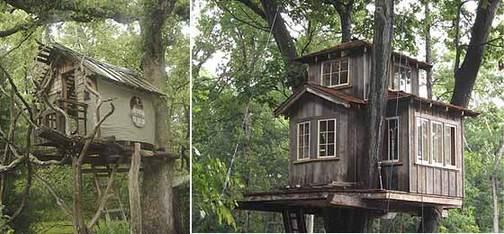 Treehouse060626_560_1